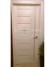 Фото установленной Дверь Профиль Дорс 8D Черный Браш Стекло Серебряный Лак